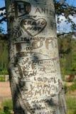 grawerujący drzewo obraz stock