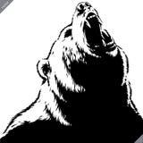 Graweruję odizolowywał niedźwiadkowego ilustracyjnego wektorowego nakreślenia liniową sztukę obraz royalty free