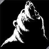 Graweruję odizolowywał niedźwiadkowego ilustracyjnego wektorowego nakreślenia liniową sztukę zdjęcie stock