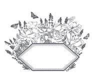 Graweruje kwiatu wektoru ramy nakreślenia łąkowego projekt royalty ilustracja