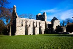 Gray Abbey ruins Royalty Free Stock Photo