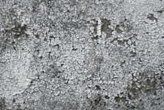 Gray aged grunge wall Stock Image