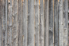 Gray aged wooden boards background Royalty Free Stock Image