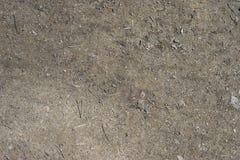 Gray al suolo della ghiaia della sporcizia immagini stock libere da diritti