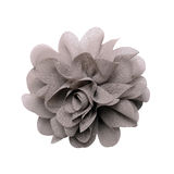 Gray artificial flower isolated on white Stock Photography