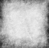 Gray  background. Stock Image