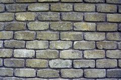 Gray green texture of old and dirty bricks on the wall Royalty Free Stock Images