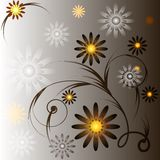 Gray background with flowers. A gray background with flowers in brown, white and yellow royalty free illustration