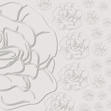 Gray background with roses. cut from paper. Stock Photos