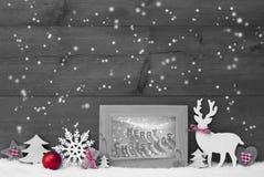 Gray Background Snowflakes Frame Merry jul Royaltyfri Fotografi