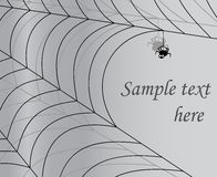 Gray background with spider and cobweb. Vector Illustration with  a place for your text Stock Image