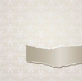 Gray background with torn paper Royalty Free Stock Photography