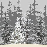 Gray background of the winter forest with snowy trees. Gray background of winter forest with snowy trees Royalty Free Stock Image