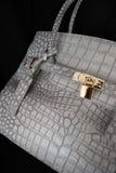 Gray bag Stock Image