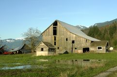 Gray Barn. Weathered old gray barn on a sunny spring afternoon Stock Photos