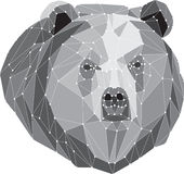 Gray bear portrait. Abstract low poly design Stock Photos