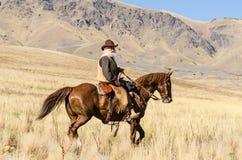 Gray Bearded Rider royalty free stock photos