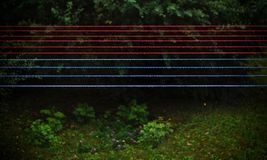 Gray Blue and Red String Beside Green Trees during Nighttime Stock Image