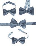 Gray bow tie isolated Stock Photos
