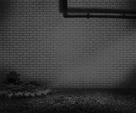 Gray Brick Backyard Background Photo stock