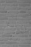 Gray brick wall for background. Beautiful gray brick wall for background Royalty Free Stock Images