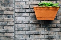 Gray brick wall and flowerpot at Chinese old street Hutong in Beijing, China. Gray brick wall and flowerpot at Chinese old street Hutong at Shichahai in Beijing royalty free stock image