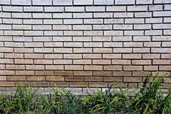 Gray brick wall of the house and green grass Royalty Free Stock Photos