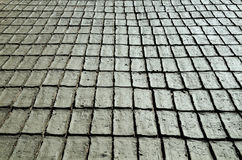 Gray bricks Stock Image