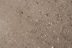 Gray brown sand with splashes of light pebbles stock photos
