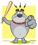 Gray Bulldog Cartoon Mascot Character agresivo que celebra un palo y señalar Imagen de archivo