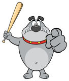 Gray Bulldog Cartoon Mascot Character fâché tenant une batte et un pointage Photographie stock libre de droits