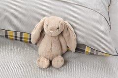 Gray Bunny Fotografia de Stock Royalty Free