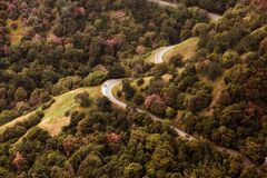 Gray Car on Long Winding Road Stock Image