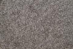 Gray Carpet Background Stock Image