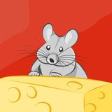 Gray cartoon mouse and cheese Royalty Free Stock Photo
