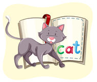 Gray cat and a book Royalty Free Stock Photography