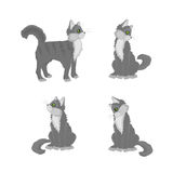 Gray cat. In different poses. Vector illustration Royalty Free Stock Photo