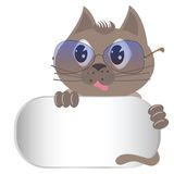 Gray cat with glasses Royalty Free Stock Photos