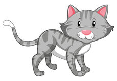 Gray cat with happy face. Illustration Royalty Free Stock Photography