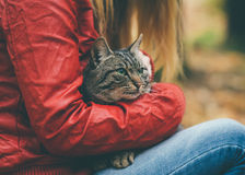 Gray Cat homeless and Woman hugging Outdoor. Lifestyle and Friendship helping concept Stock Photography