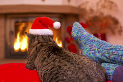 Gray Cat with Santa hat and a fireplace. Grey cat by the fireplace.Seated Gray Cat with Santa hat and a fireplace.Christmas cat by the fireplace. Woman relaxes Royalty Free Stock Photo