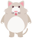 Gray cat with silly face. Illustration Stock Image