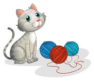 The gray cat with toys Royalty Free Stock Photography