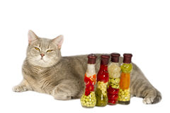 Gray cat with yellow eyes near decorative bottle. S with canned vegetables Stock Photo