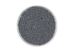 Gray catalyst pellets in a glass container Stock Photography