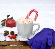 Ceramic mug with hot chocolate and marshmallow. Gray ceramic mug with hot chocolate and marshmallow in the snow Stock Photo