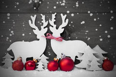 Gray Christmas Decoration, par da rena, flocos de neve, bola vermelha Imagem de Stock