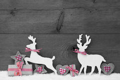 Gray Christmas Decoration, Reindeer Couple In Love Royalty Free Stock Image