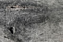 GRAY CLOSEUP OF WOOD GRAIN WITH SAW MARKS. A closeup of a piece of slab of wood shows the holes made by worms and the grain of the wood. Marks from the saw blade royalty free stock photos