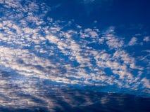 Gray Clouds ondulado blanco imagen de archivo libre de regalías